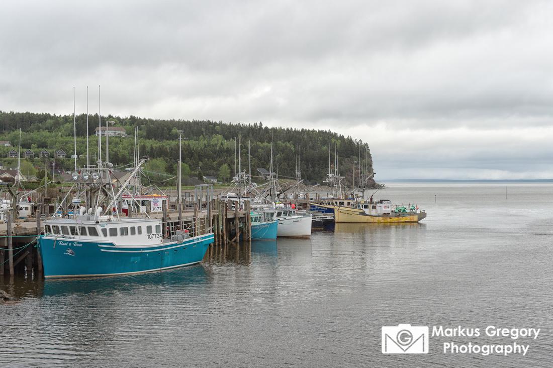 Alma Harbour